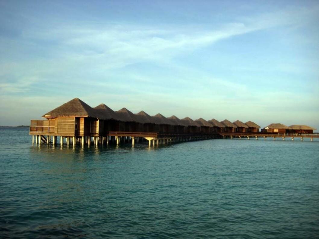 Solnedgang - Full Moon Resort på Maldivene