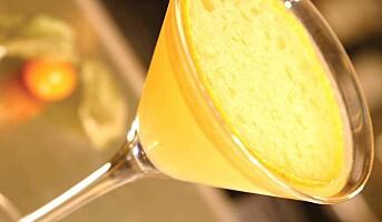 5 gode cognacdrinker