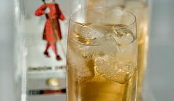 Gin  mer enn gin tonic