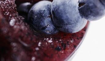 La deg inspirere av sesongens bær og frukter