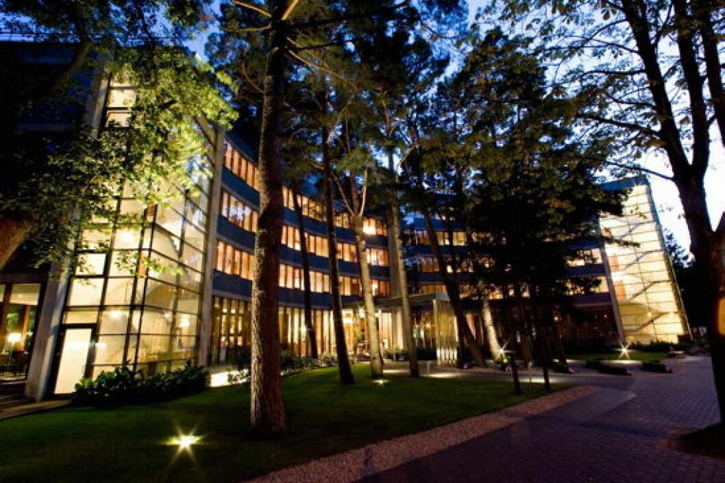 Hotel Palanga belysning trær