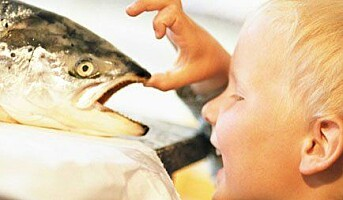 Norsk Sjømatsenter inviterer til kokkekurs under Smak 09