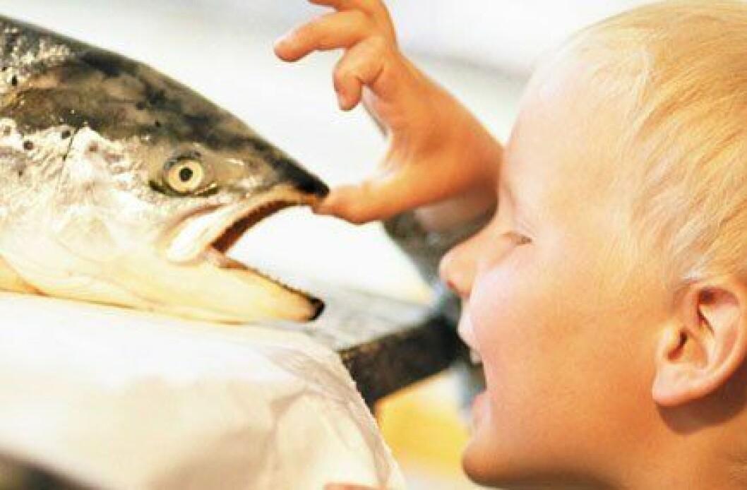 Barn vil ha sjømat
