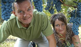 Norsk par med vingård i Piemonte