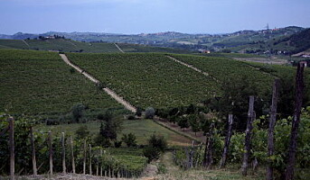 Kvalitet fra Piemonte