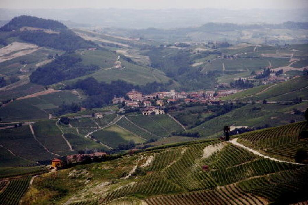 Piemonte vinmarker Barolo