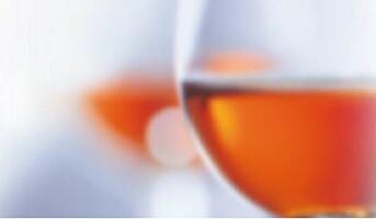 Cognac Discovery i Oslo