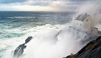 Sterk Storm, Norges sterkeste akevitt