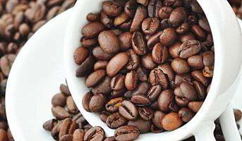 Kaffe er sunt!