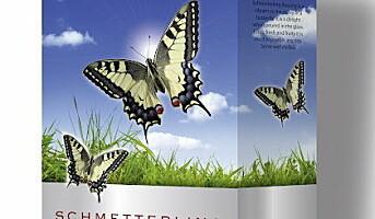 En samling av sommerfugler