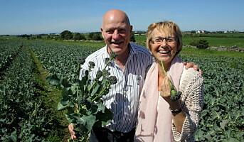 Dyrker ny supergrønnsak