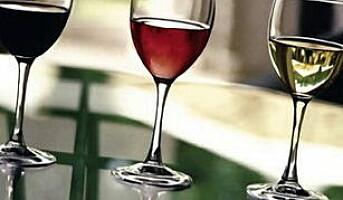 WineTailor satser på kunst og vin