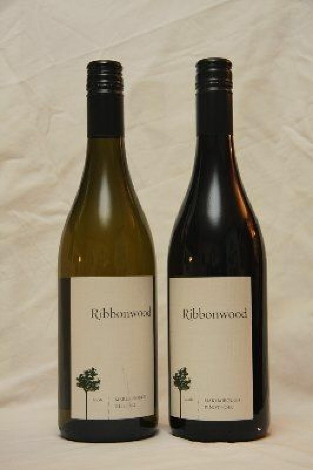 Ribbonwood New Zealand2