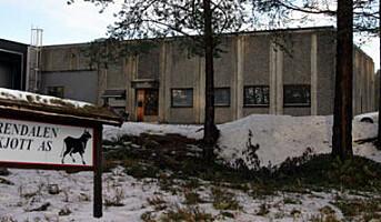 Rendalshakk fra Østerdalen