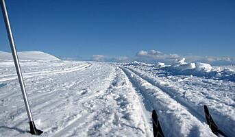 Beitostølen – Norges beste skidestinasjon