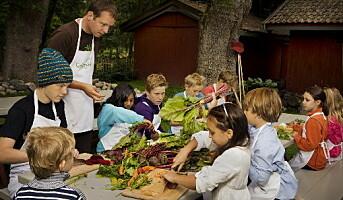 Viestad åpner matkultursenteret