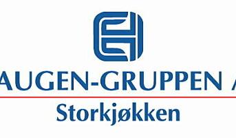 Fazer fra Galleberg til Haugen-Gruppen