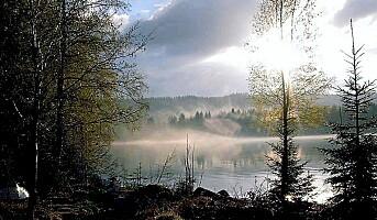 Finnskogen  attraktivt turistområde