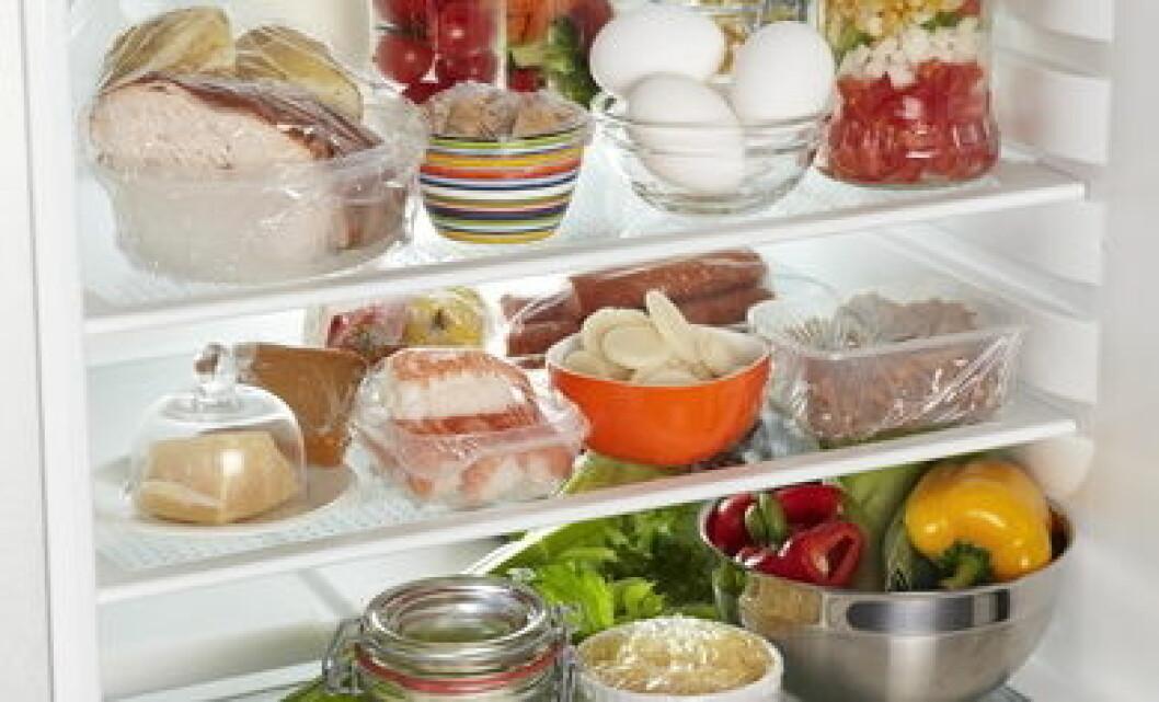 KjøleskapRestemat3