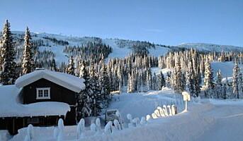Feirer norsk jul på leid hytte