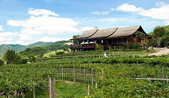 Thailand  et nytt vinland