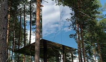 Spesielt hotellkonsept i trærne i Sverige