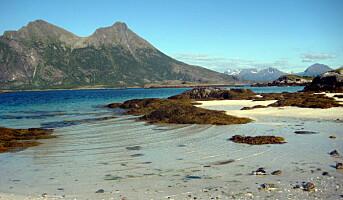 Utenlandstrafikken til Norge øker