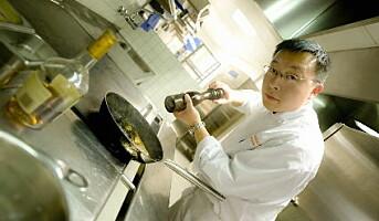 Fursetgruppen drifter restaurant på EXPO Shanghai