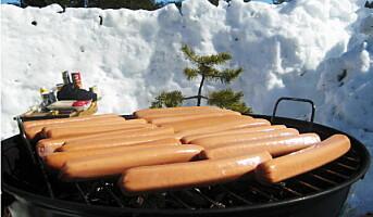 Grillpølser, flintstek og indrefilet på grillen