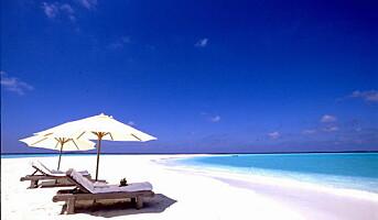 Maldivene øker i popularitet