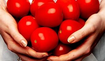 Tomaten blir enda sunnere
