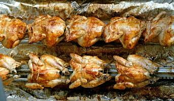 Sterk salgsøkning av kylling i storhusholdningsmarkedet