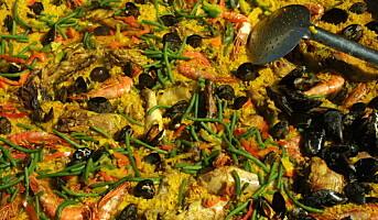 Norske kokker kan søke Spania-stipend