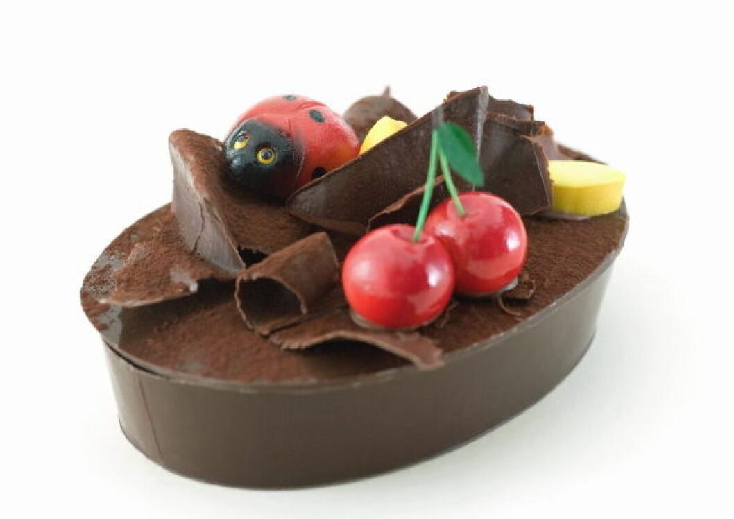 Sjokolade illustrasjon colourbox1