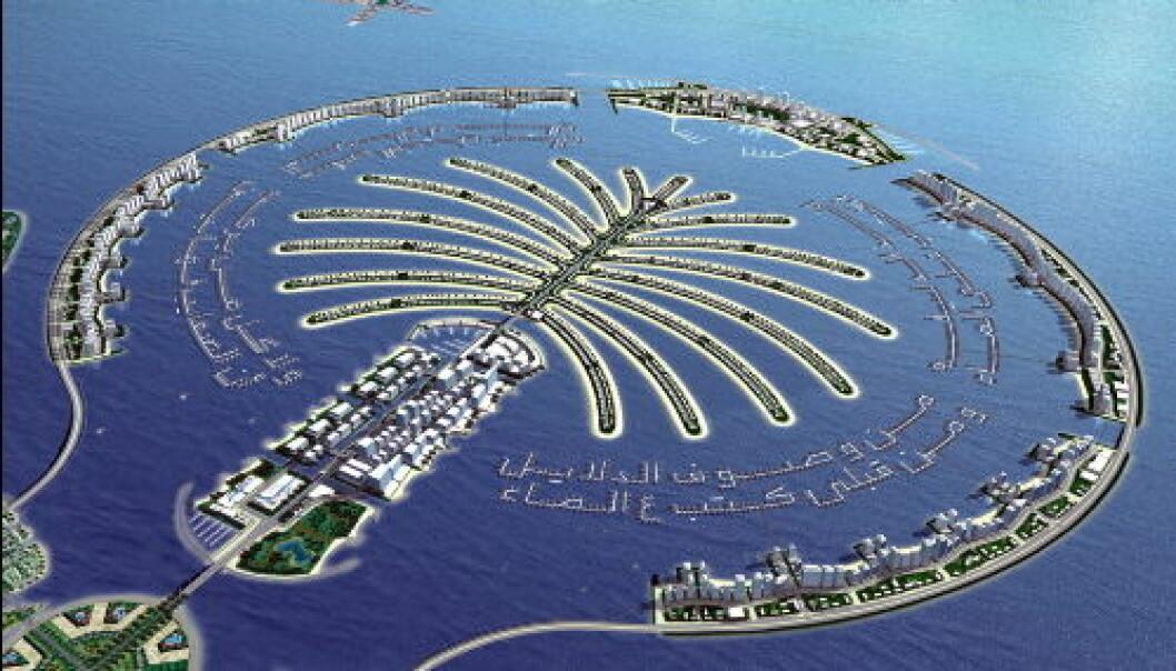 Dubai palme nett