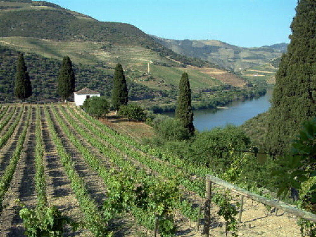 Portugal vinmarker nett1