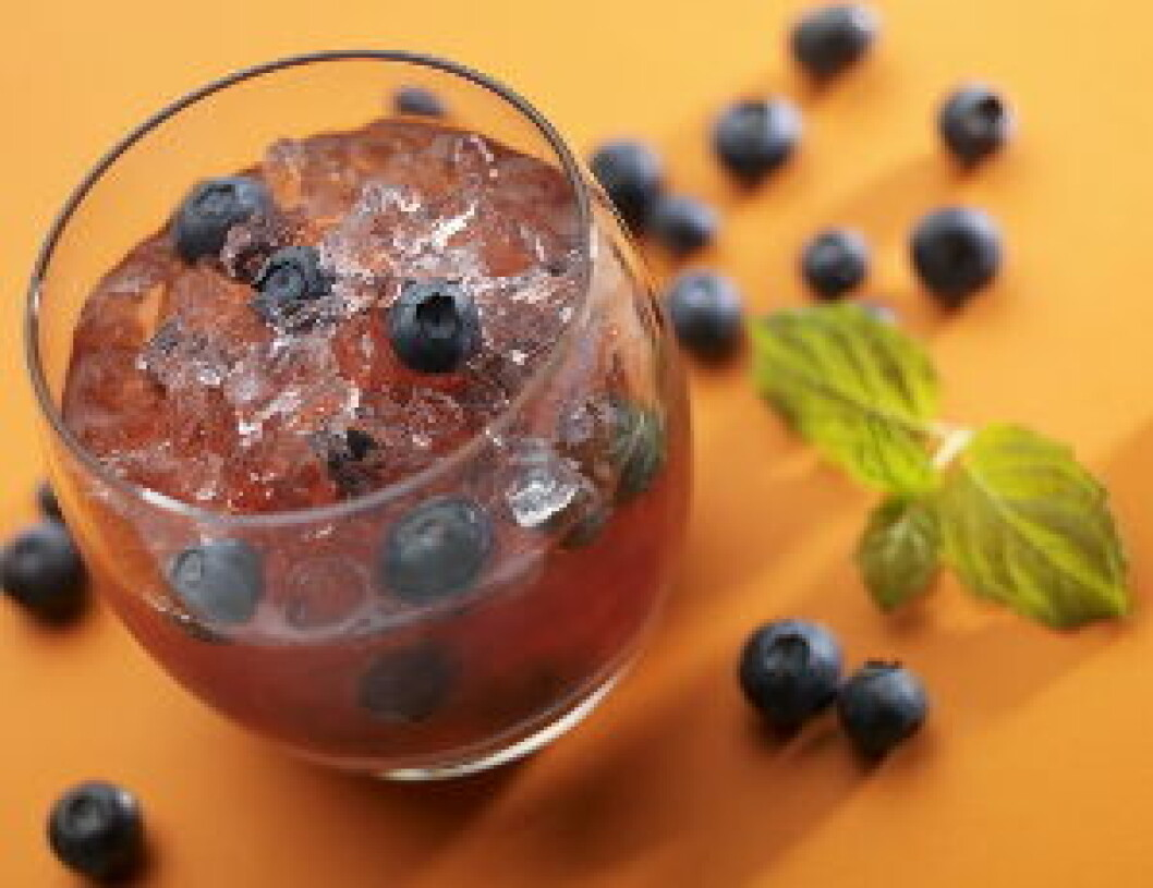 Vikingfjord Blueberry Crush nett