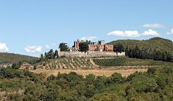 Vin fra Italia til topps