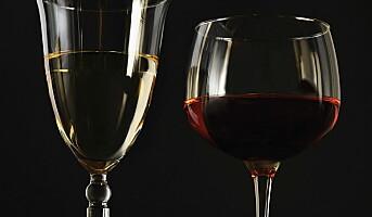 Ny vinfestival på Geilo: Stetten
