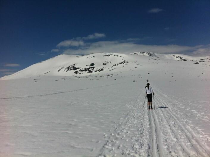Nå starter vårskisesongen! Her fra Valdresflya mot Raslet og Rasletind. (Foto: Morten Holt)