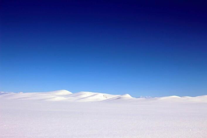 Vakkert vinterlandskap på Valdresflya denne uka. Nå starter vårskisesongen for fullt i området. (Foto: DestinasjonsKirurgene)