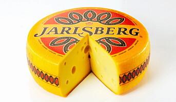 Nytt stort Jarlsberg-anlegg i Irland