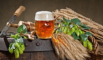 Får Hedmarks mest omfattende ølutsalg
