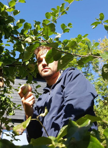 På jakt etter råvarer til Lovløs Cider. (Foto: Privat)