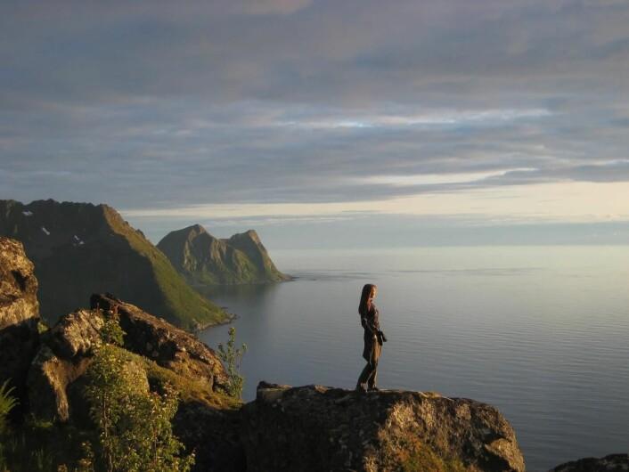 Senja i midnattssol. (Foto: Morten Holt)