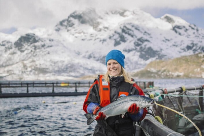 Illustrasjonsfoto: Norges sjømatråd.