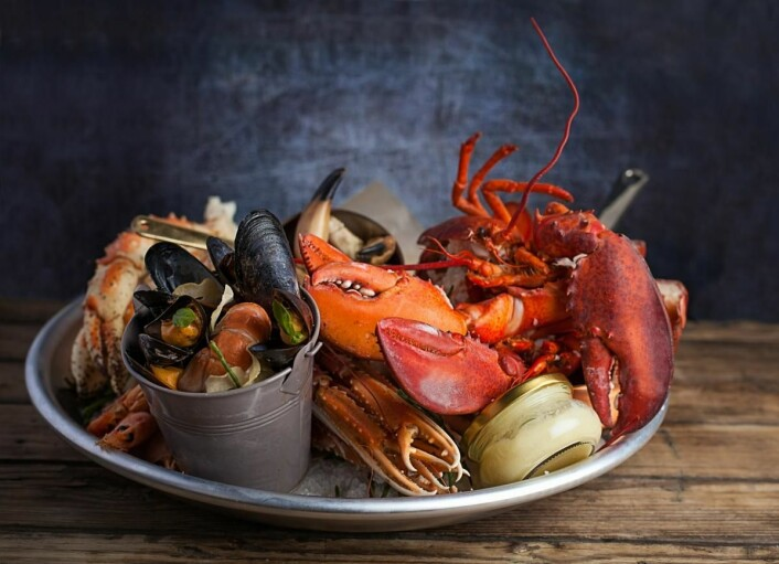 26 North Restaurant & Social Club satser rene, lokale ingredienser og råvarer for å gi gjestene det absolutt beste som de norske fjorder, gårder og skoger har å by på. (Foto: Rezidor)