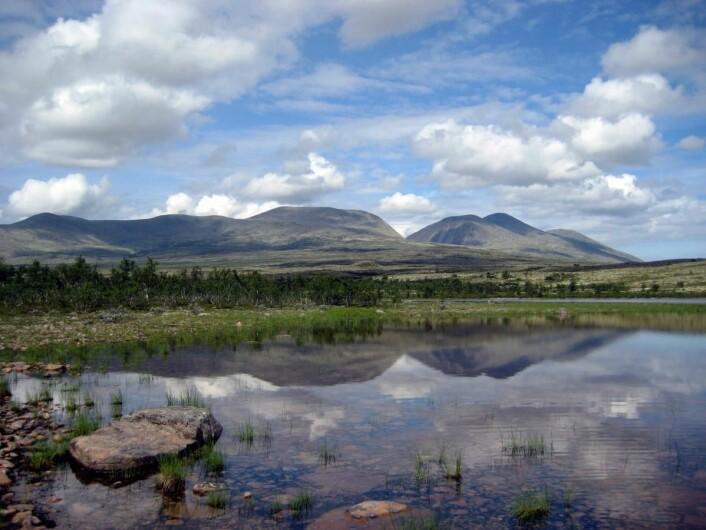 Mektige Rendalssølen (1755 moh.) ligger ikke langt unna. Her fra Sandtjern. (Foto: Morten Holt)