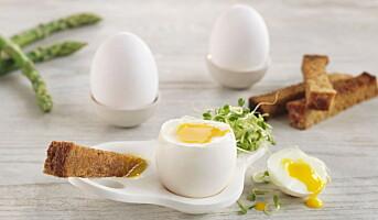 Egg er løsningen