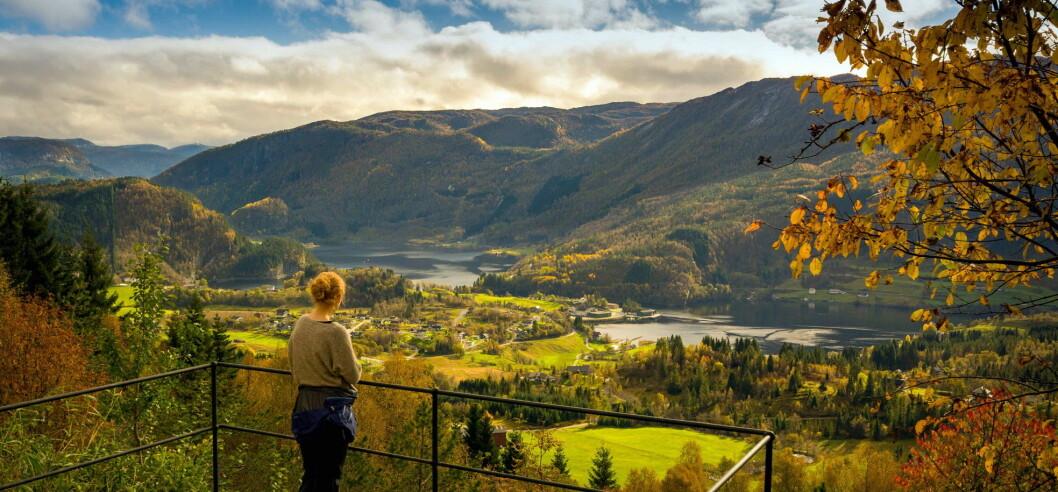 Rytne, en overnattings- og aktivitetsbedrift innerst i Dalsfjorden i Sogn og Fjordane. (Foto: Americo Ferreira)